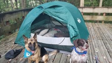 Camping Bmore2Pg (3)
