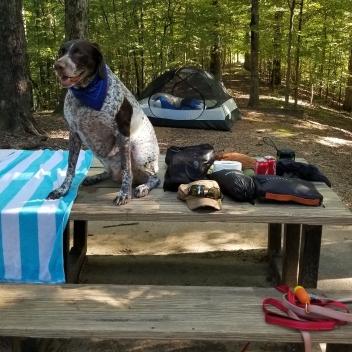 camping-bmore2pg-6.jpg